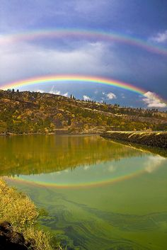 3 Rainbows - one reflected.