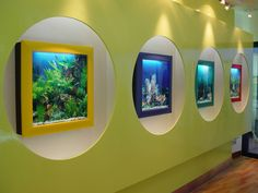 You may have a flat panel TV on your wall. But how about live fish swimming on the wall?  Learn about aquariums so beautiful, you can hang them on the wall like works of art. Hear the story of AquaVista. - The story of AquaVista, today on Why Didn't I Think of That? - https://thinkofthat.net/app/aquavista-2/
