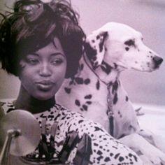 Naomi  Model as a muse book