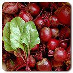 Organic Detroit Dark Red Beet