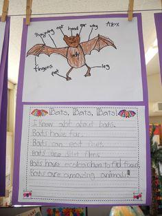 Teacher Bits and Bobs: Broken Bones, Bats, and a Thanksgiving Words BONUS!!