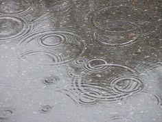 Escape the rain.