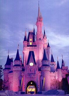 Disney world! It's a magical place and everyone finds the kid in them there - I will go back again!
