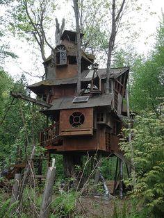 Tree House in Redmond | Flickr - Photo Sharing!