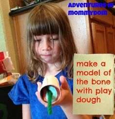 make a model of the bone with play dough