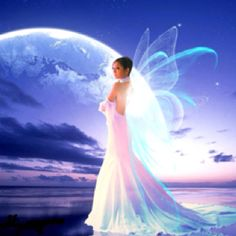 Silent fairy