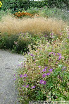 Piet Oudolf's private garden