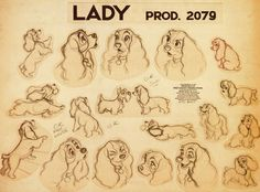 """Lady and the Tramp"" Lady character model"