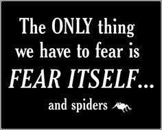 No spiders - no fear!
