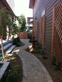 Narrow side yard pathway, note trellis