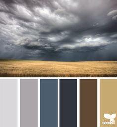 This one is probably my favorite palette, excluding that dark brown (if I used that it would be sparingly).  Sand, greys and lighter blues for main rooms, dark blue for bedroom, grey for master bath.
