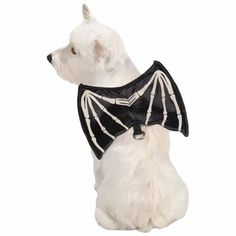 Zack & Zoey Skeleton Glow Wing Harnesses - Small | EntirelyPets