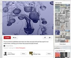 Pinterest is Testing a New Look. Here's How to Get On Board! - Technorati Social Media