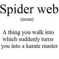Definition of a spider web