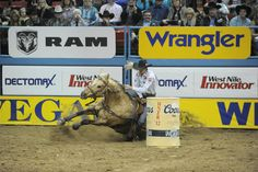 Sherry Cervi and Stingrays fall.. See more photos at clfbarrelracing.blogspot.com