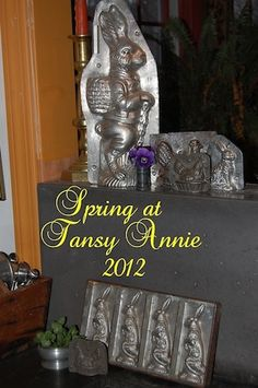 Tansy Annie