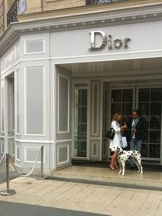 Avenue Montaigne Dior store Paris shopping