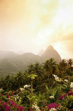 St. Lucia.... has beautiful beaches AND rainforest/mountains! mainly Soufrière.