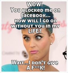 WOW!  You blocked me on Facebook... how will I go on without you in my LIFE?       Wait...I don't give  A F**K!