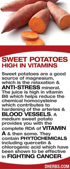 sweet potatoes high in vitamins    Sweet potatoes are a good source of magnesium, which is the relaxation & anti-stress mineral. The juice is high in vitamin B6 which helps reduce the chemical homocysteine which contributes to hardening of the arteries & blood vessels. A medium sweet potato provides you with the complete RDA of vitamin A & then some. They contain phytochemicals including quercetin & chlorogenic acid which have been shown to be effective in fighting cancer. #dherbs #healthtips