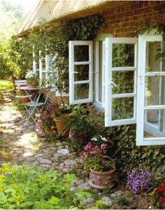 English Cottage  ... the windows, the stone path, the vines.
