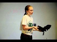 4-H Poultry Showmanship - Old English Game Bantam