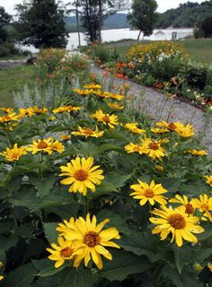 Constitution Island (Philipstown, NY) - The restored gardens of Anna Warner, who lived on the island from 1836 to 1915.