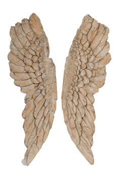 Brown Wooden Pair Wing Wall Accent