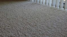 Refresh an Old, Stained Carpet with Borax and Cornmeal