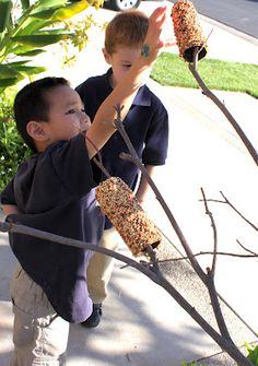 Toilet paper roll birdfeeder - spread thick peanut butter on empty roll and roll in birdseed!   Fun!