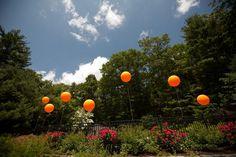 orange in nature, oversized balloons