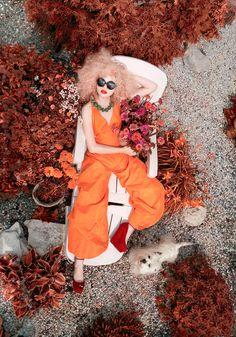 """""""Belle Rosemonde""""   Model: Angelina Elhova, Photographer: Andrey Yakovlev, September 2011"""