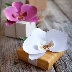 Learn how to make a paper orchid with our DIY tutorial and free printable template. Perfect to decorate your gift or put in your hair.