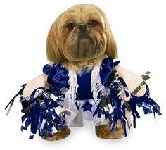Spirit Paws Dog Costume - SMALL