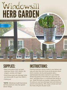 Plant your own kitchen herbs and flavorful cooking will always be within reach.  #SaveMoney #DIYHome #HouseholdTips #KitchenWindowsillSpices #HerbGarden #FoodieHack