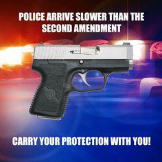 2nd Amendment...use it.