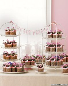 Wedding favors- potted plants