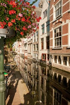 Canal Delft South Holland Netherlands