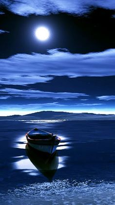 moonlit night, boat, blue moonlight, magnolia