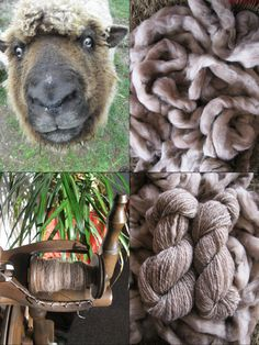 from sheep to stash