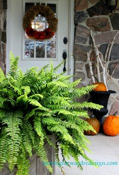 Simple Fall Porch at the Farm