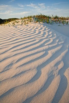 Mustang Island Texas. #travel #travelphotography #travelinspiration