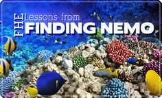 FHE: Lessons from Finding Nemo