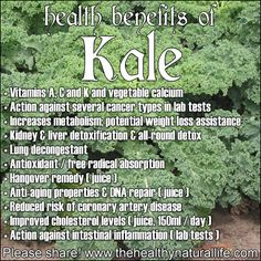 The Many Health Benefits Of Kale! #health #food