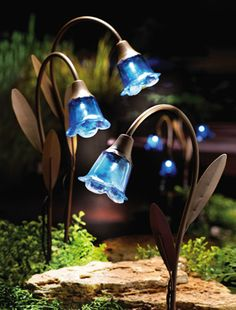 blue bell stake solar lawn lights ~