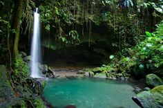 Dominica. I'm pretty sure I went to this exact spot, called Emerald Pool