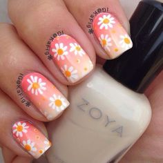 Nail design - white daisies on peach ombre- spring nails