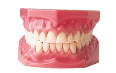 diseas, dental dentur, bad teeth, dc dentist, perman state, dentists, brushes, human mouth, archaeolog news
