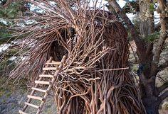 favorit place, resorts, treebon resort, big sur, treehous, bird nests, human nest, hotel, tree hous