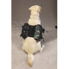Travel packs for dogs